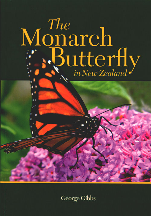 Monarch butterfly in New Zealand. George Gibbs.