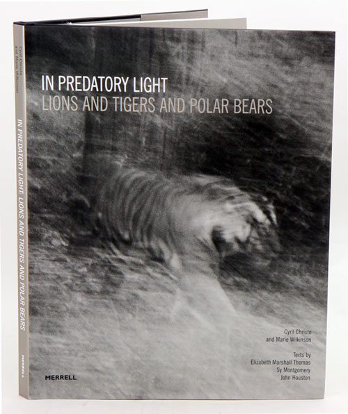 In predatory light: lions and tigers and Polar bears. Cyril Christo, Marie Wilkinson.