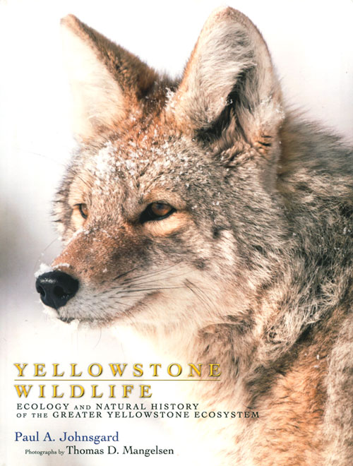 Yellowstone wildlife: ecology and natural history of the greater Yellowstone ecosystem. Paul A. Johnsgard, Thomas D. Mangelsen.