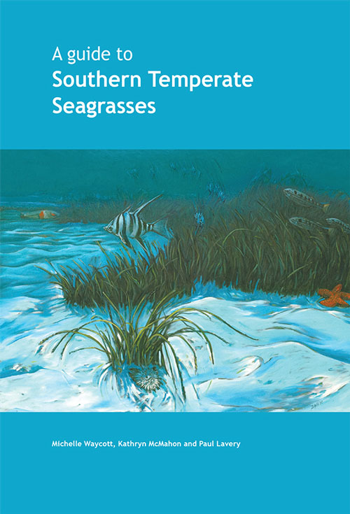 A guide to southern temperate seagrasses. Michelle Waycott, Kathryn McMahon, Paul Lavery.