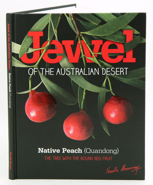 Jewel of the Australian desert Native peach (Quandong): the tree with the round red fruit. Neville Bonney.