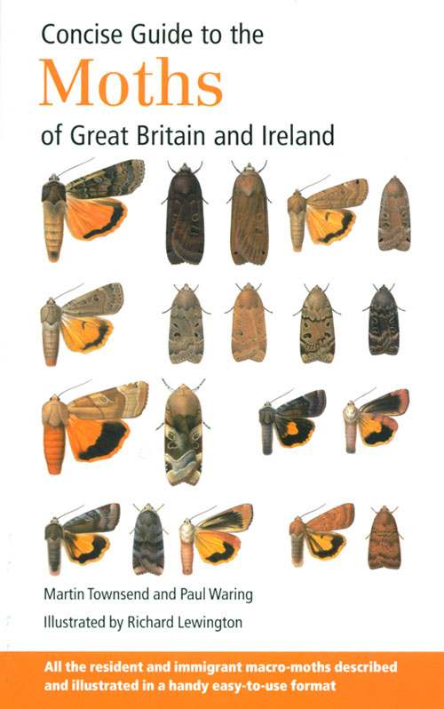 Concise Guide to the Moths of Great Britain and Ireland. Martin Townsend, Paul Waring.