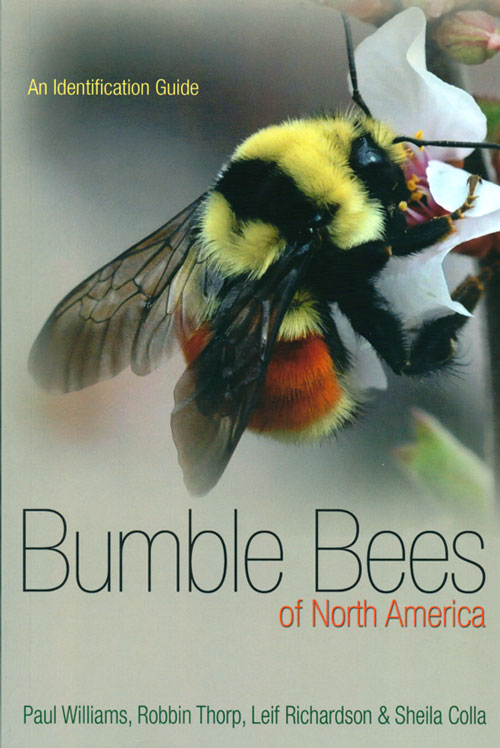 Bumblebees of North America: an identification guide. Paul Williams.