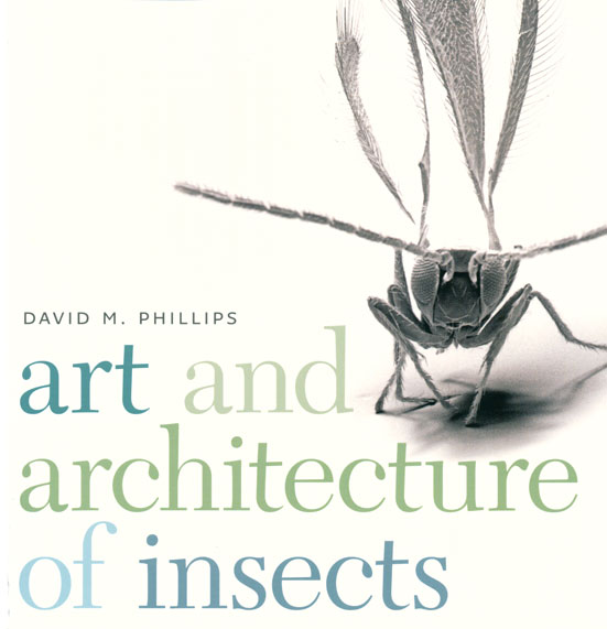 Art and architecture of insects. David M. Phillips.