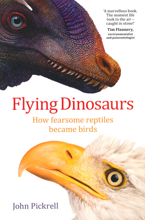 Flying dinosaurs: how fearsome reptiles became birds. John Pickrell.
