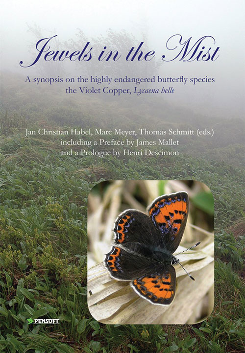 Jewels in the mist: a synopsis on the highly endangered butterfly species the Violet copper, Lycaena helle. Jan Christian Habel.