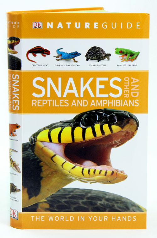 Nature guide snakes and other reptiles and amphibians. Chris Mattison.