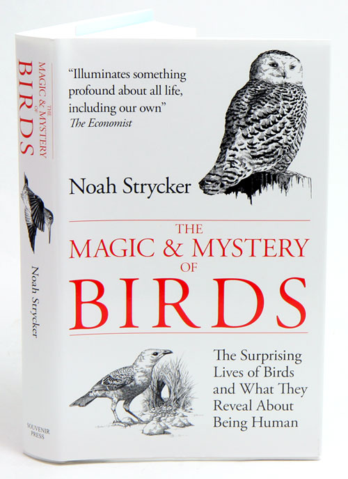 The magic and mystery of birds: the surprising lives of birds and what they reveal about being human. Noah Strycker.