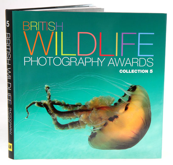 British Wildlife Photography Awards: collection five. Donna Wood.
