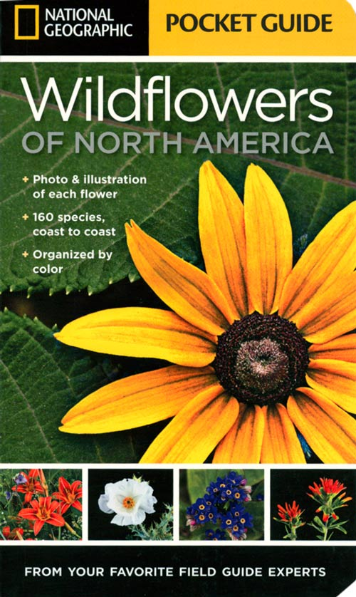 National Geographic pocket guide to wildflowers of North America. National Geographic.