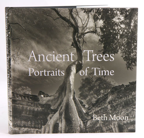 Ancient trees: portraits of time. Beth Moon.