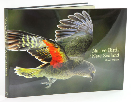 Native birds of New Zealand. David Hallett.