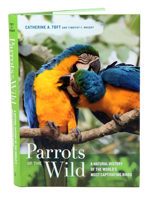 Parrots of the wild: a natural history of the world's most captivating birds. Catherine A. Toft, Timothy F. Wright.