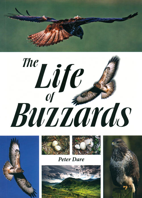 The life of buzzards. Peter Dare.