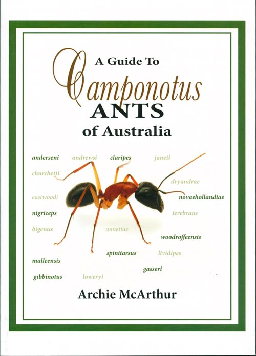 A guide to Camponotus ants of Australia. Archie McArthur.
