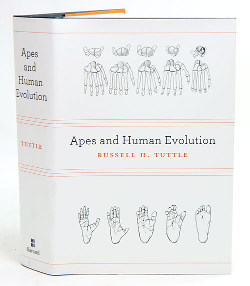 Apes and human evolution. Russell H. Tuttle.