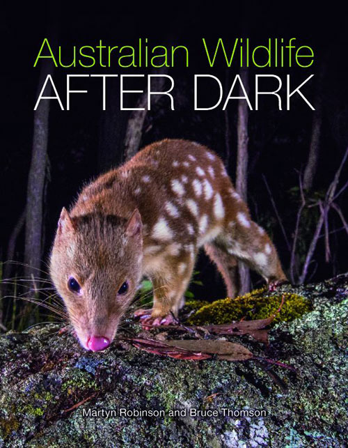 Australian wildlife after dark. Martyn Robinson, Bruce Thomson.
