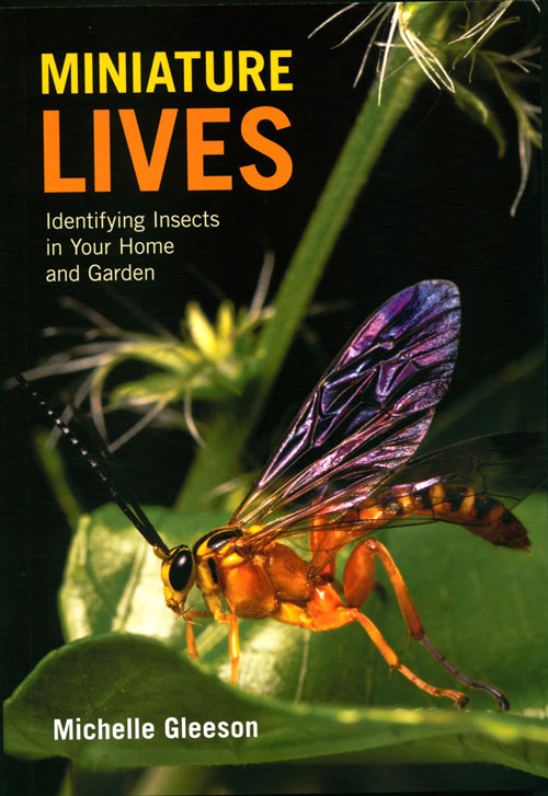 Miniature lives: identifying insects in your home and garden. Michelle Gleeson.