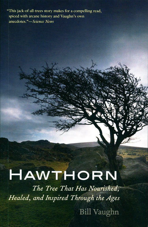 Hawthorn: the tree that has nourished, healed, and inspired through the ages. Bill Vaughn.