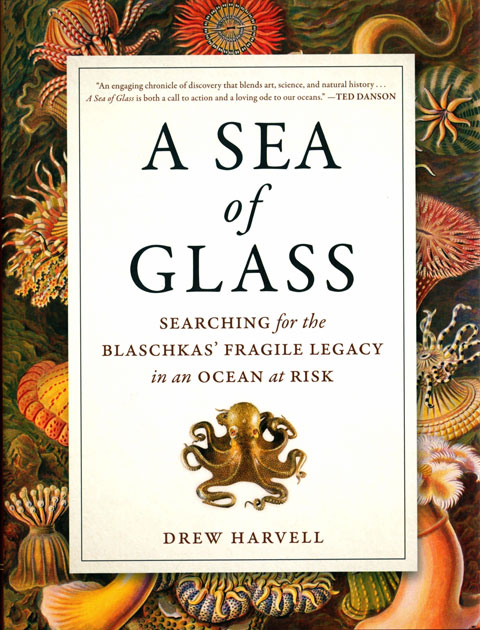 A sea of glass: searching for the Blaschkas' fragile legacy in an ocean at risk. Drew Harvell.