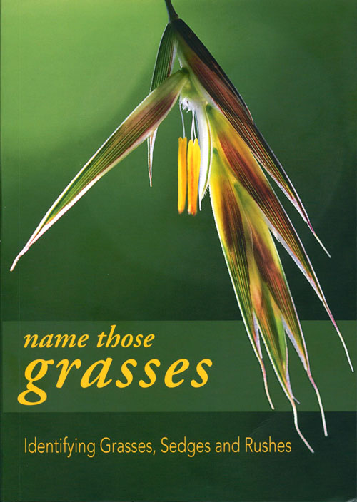 Name those grasses: identifying grasses, sedges and rushes. Ian Clarke.