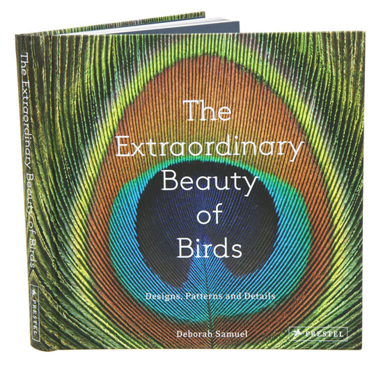 The extraordinary beauty of birds: designs, patterns and details. Deborah Samuel.