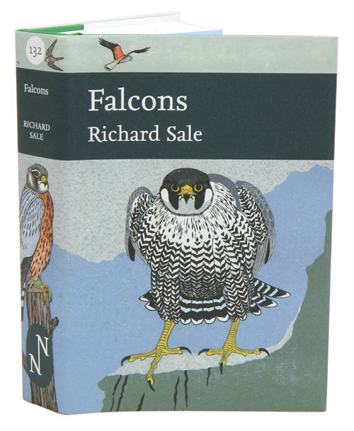 Falcons. Richard Sale.