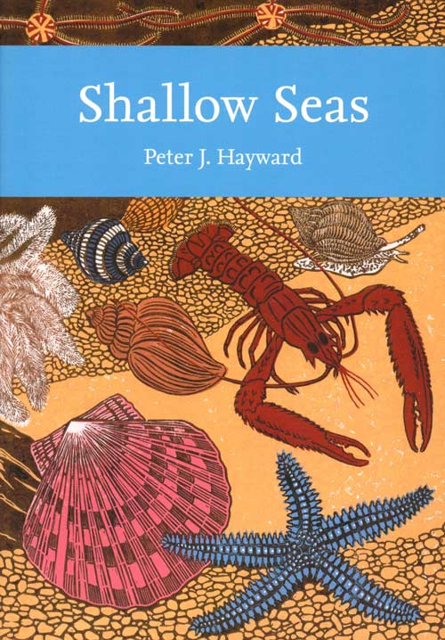 Shallow seas of Northwest Europe. Peter J. Hayward.
