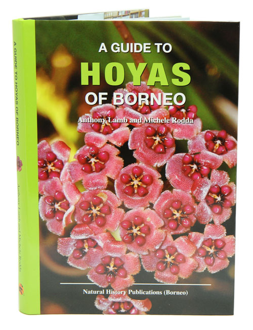 A guide to the hoyas of Borneo. Anthony Lamb, Michele Rodda.