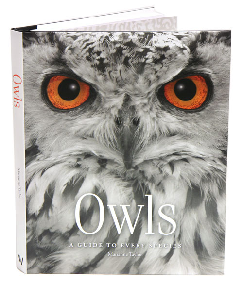 Owls: a guide to every species. Marianne Taylor.