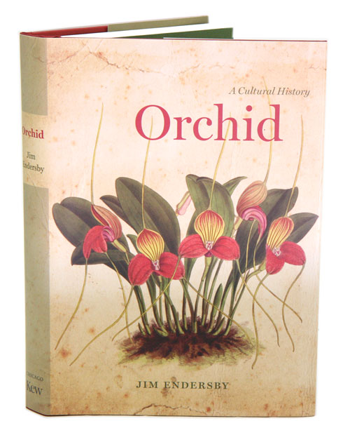 Orchid: a cultural history. Jim Endersby.