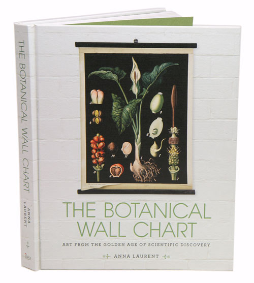 Botanical wall chart: art from the golden age of scientific discovery. Anna Laurent.