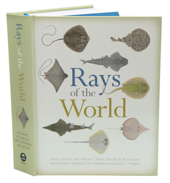Rays of the world. Peter Last.