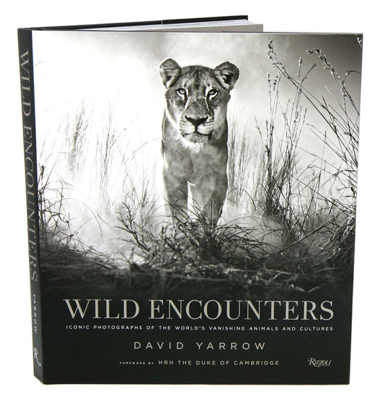 Wild encounters: iconic photographs of the world's vanishing animals and cultures. David Yarrow.