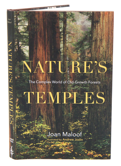 Nature's temples. Joan Maloof.