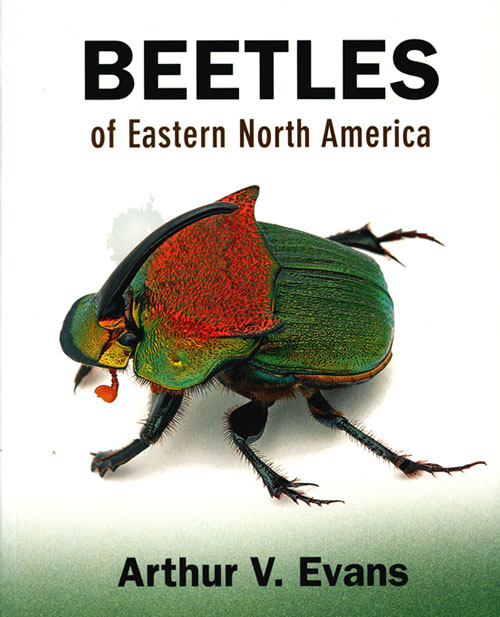 Beetles of eastern North America. Arthur V. Evans.
