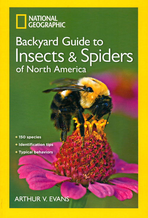 National Geographic guide to the insects and spiders of North America. Arthur V. Evans.