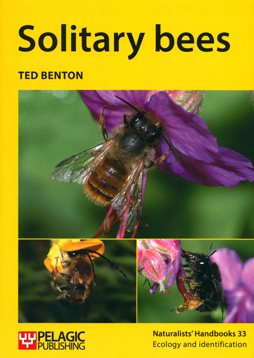 Solitary bees. Ted Benton.
