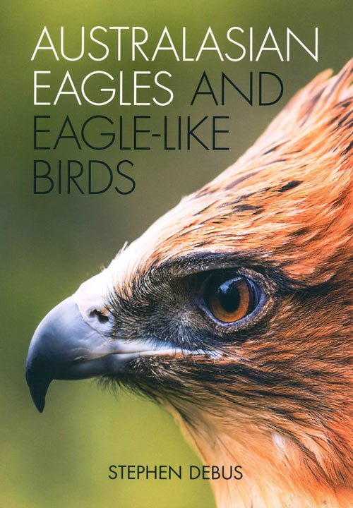 Australasian eagles and eagle-like birds. Stephen Debus.