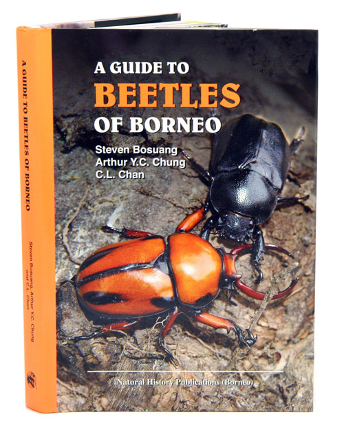 A guide to beetles of Borneo. Steven Bosuang, Arthur Y. C. Chung, C L. Chan.