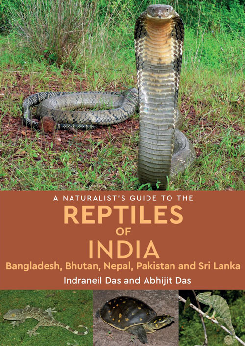A naturalist's guide to the reptiles of India, Bangladesh, Bhutan, Nepal, Pakistan and Sri Lanka. Indraneil Das, Abhijit Das.