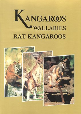Kangaroos, wallabies and rat-kangaroos. Gordon Grigg.