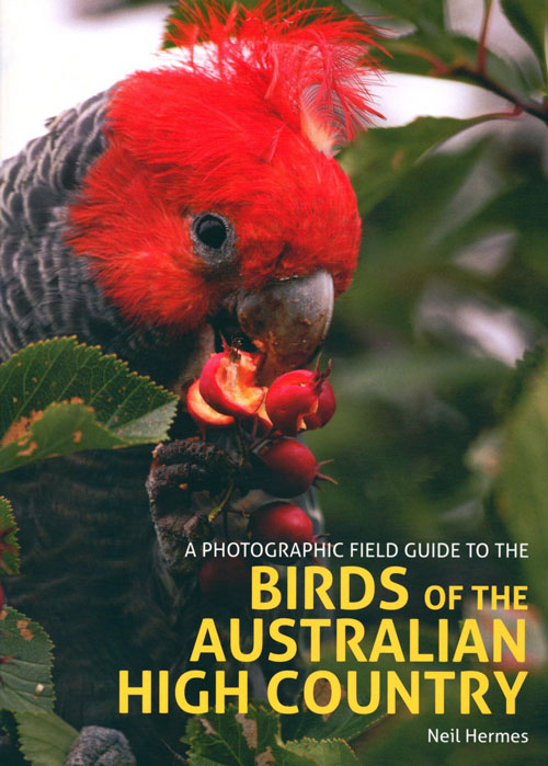 A photographic field guide to the birds of the Australian high country. Neil Hermes.
