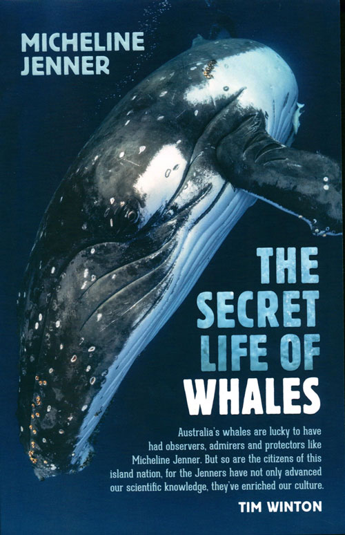 The secret life of whales: a marine biologist reveals all. Micheline Jenner.