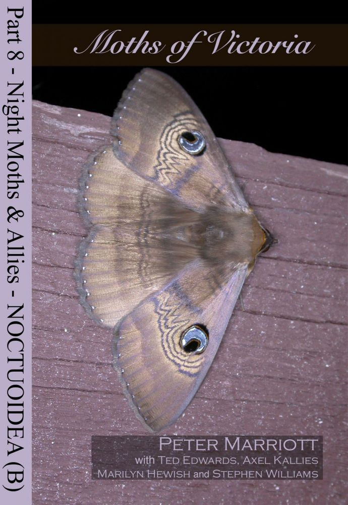 Moths of Victoria: part eight, Night moths and allies Noctuoidea (B). Peter Marriott.