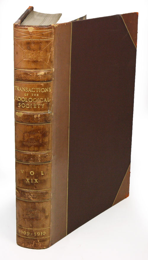 Zoological results of the Ruwenzori Expedition, 1905-1906. W. R. Ogilvie-Grant.