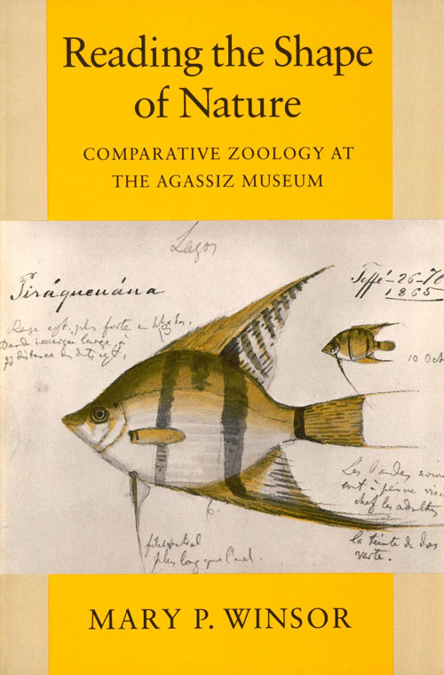 Reading the shape of nature: comparative zoology at the Agassiz Museum. Mary P. Winsor.