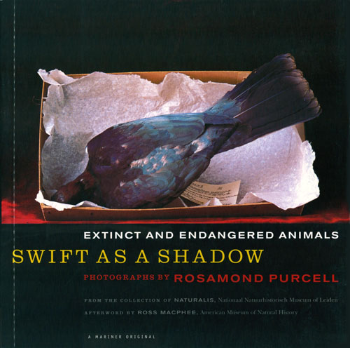 Swift as a shadow: extinct and endangered animals. Rosamond Purcell.