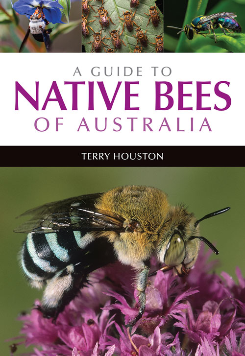 A guide to native bees of Australia. Terry Houston.