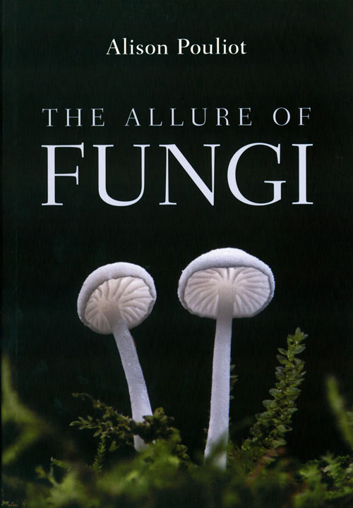 The allure of fungi. Alison Pouliot.
